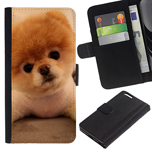 OMEGA Case / Apple Iphone 6 PLUS 5.5 / Pomeranian puppy golden brown dog / Cuir PU Portefeuille Coverture Shell Armure Coque Coq Cas Etui Housse Case Cover Wallet Credit Card