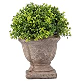 5 Inch x 5.5 Inch Green Plastic Grass Indoor Outdoor Artificial Plant Potted Fake Plant for Bathroom Home Decor/Office/ Bookshelf
