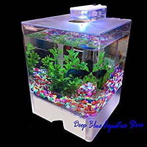 Perfect new fish tank aquarium betta aquarium for Betta fish tanks amazon