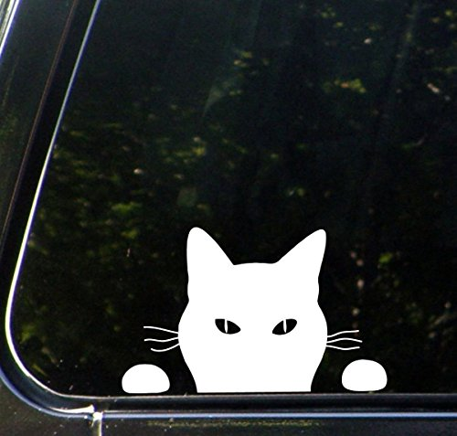Peaking Cat PREMIUM Decal 5 inch WHITE | Funny | Animal Pet Lover | Girl | Women | VW Bug | car truck van laptop macbook bumper sticker