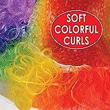 Beistle 60273 Rainbow Clown Wig