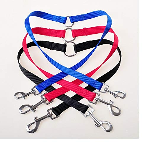 Leash Training - 200pcs Qualified Strong Nylon Pet Double Leash Twin Dog Multicolor Lead Walk Two Dogs Wa1878 - Collar Color Puppies Pulls For Book That Harness Your Puppy by Number onE (Image #6)