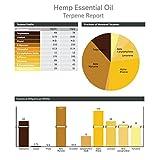 House-of-Hemp-100-Pure-Cannabis-Sativa-Terpenes-Essentail-Oil-Therapeutic-Grade-5mL