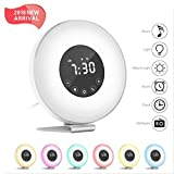 Hassh Sunrise Alarm Clock - Digital LED Clock with Multiple Nature Sounds,7 Changing Colors and FM Radio for Bedrooms - Sunset Simulation & Touch Control - with Snooze Function for Heavy Sleepers