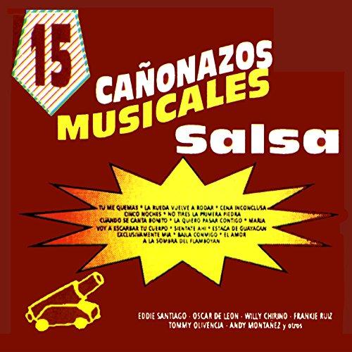 ... 15 Canonazos Musicales Con Salsa