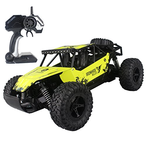 The 8 best rc cars off road