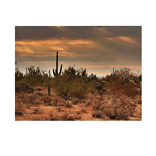 Saguaro Cactus Decor Photography Background,Dramatic Shady Desert View with a Storm Cloud Approaching Western Arizona Photo Backdrop for Studio,8x7ft