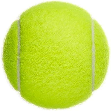 weimay pelotas de tenis deportes al aire libre profesional de alta elasticidad jugar Cricket Perro de juguete pelota para lecciones, práctica, Throwing máquinas y jugar con mascotas–1pc