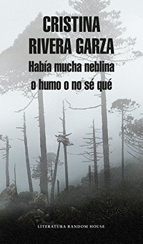 Había mucha neblina o humo o no sé qué: Caminar con Juan Rulfo / There Was a Lot  of Fog, or Smoke, or I'm Not Sure What: Walking with Juan Rulfo (Spanish Edition)
