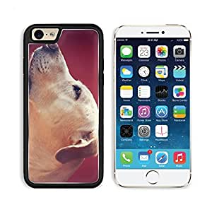 Labrador Retriever Look Face Profile Dog Apple iPhone 6 TPU Snap Cover Premium Aluminium Design Back Plate Case Customized Made to Order Support Ready Liil iPhone_6 Professional Case Touch Accessories Graphic Covers Designed Model Sleeve HD Template Wallp
