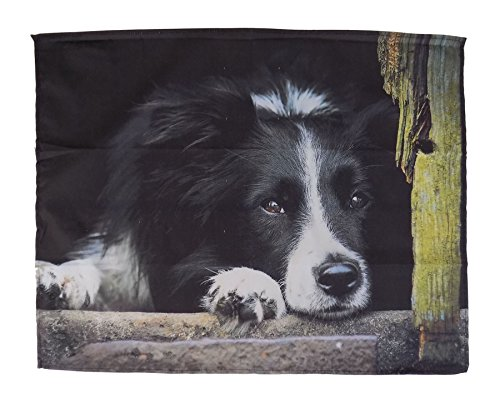 LUXURY BLACK WHITE BORDER COLLIE SHEEP DOG SUPERSOFT FLEECE SHERPA THROW BLANKET 120 X 150CM