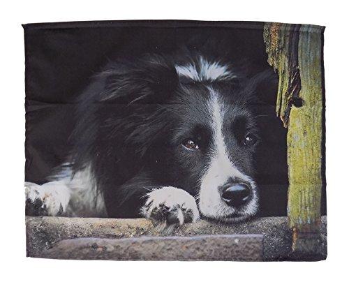 (LUXURY BLACK WHITE BORDER COLLIE SHEEP DOG SUPERSOFT FLEECE SHERPA THROW BLANKET 120 X 150CM)