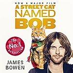 A Street Cat Named Bob   James Bowen