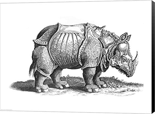 Rhinoceros by Albrecht Durer Canvas Art Wall Picture, Museum Wrapped with Black Sides, 40 x 30 inches