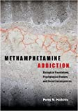 Methamphetamine Addiction, Perry N. Halkitis, 1433804239