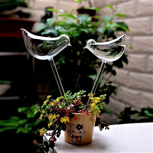 E-kay 3 Pack Plant Waterer Self Watering Globes, Bird Shape Hand Blown Clear Glass Aqua Bulbs