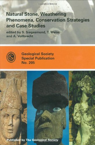 Natural Stone, Weathering Phenomena, Conservation Strategies and Case Studies (Geological Society Special Publication) (Geological Society of London Special Publications) (No. 205)