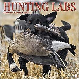 Hunting Calendar 2020 Hunting Labs 2020 Wall Calendar (Dog Breed Calendar): Willow Creek