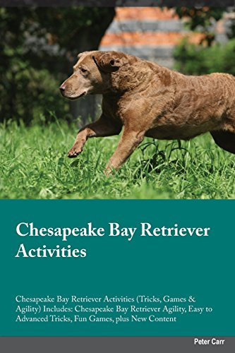 Chesapeake Bay Retriever Activities Chesapeake Bay Retriever Activities (Tricks, Games & Agility) Includes: Chesapeake Bay Retriever Agility, Easy to Advanced Tricks, Fun Games, plus New Content