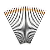 Huntingdoor 24 Pack Carbon Fiber Shaft Arrows 400 Spine for Compound Bow and Recurve Bow 31 Inch Arrows with Field Points Outdoors Hunting Practice Arrows