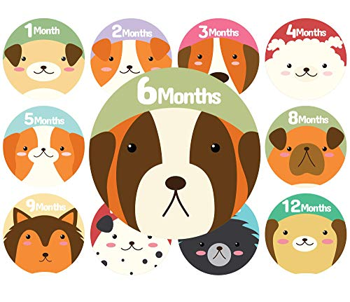 Baby Monthly Stickers | Dog Baby Stickers | Babys First Year 12 Monthly Milestone Stickers Plus 12 Holiday and Special Occasion Stickers ()