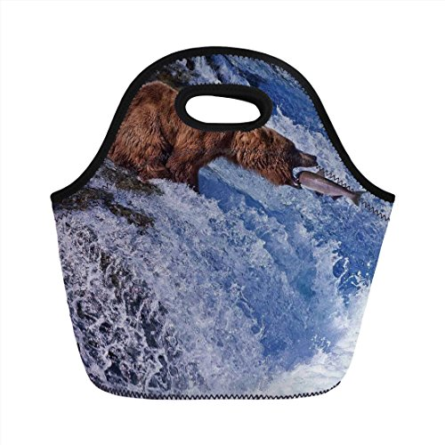 Neoprene Lunch Bag,Nature,Grizzly Bear at Katmai National for sale  Delivered anywhere in USA