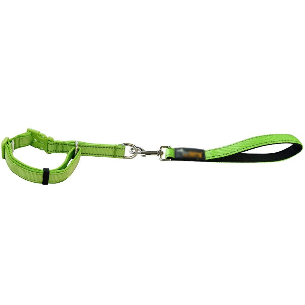 GREEN Large GREEN Large Medium and Large Dogs Training Dog Chain Short-Range Training Short Dog Leash (color   Green, Size   L)