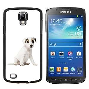 YiPhone /// Prima de resorte delgada de la cubierta del caso de Shell Armor - Jack Russell Terrier perro de perrito blanco - Samsung Galaxy S4 Active i9295