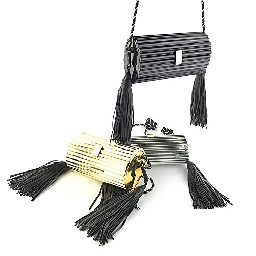 Cylindrical Dinner Evening Bag Crossbody Acrylic Clutch Package Shoulder Tassel Silver Women's xBqwYCPE