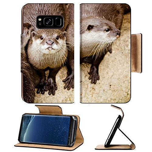 Liili Premium Samsung Galaxy S8 Flip Pu Leather Wallet Case Asian small claw otters Photo 19508410 Simple Snap Carrying