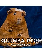 Guinea Pigs Calendar 2022: 16-Month Calendar, Cute Gift Idea For Girls