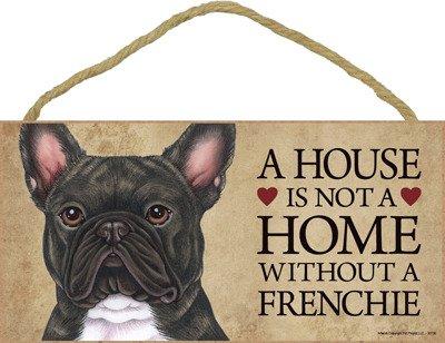 french bulldog dozen - 5