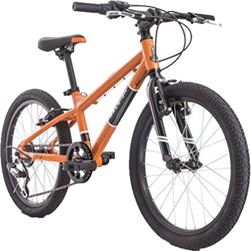 Raleigh Rowdy 20 Youth Mountain Bike Orange