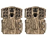 (2) Moultrie Low Glow 14MP Mini 888 Long Range Infrared Game Cameras | M-888