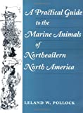 A Practical Guide to the Marine Animals of Northeastern North America, Pollock, Leland W., 0813523990
