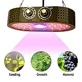 COB Grow Light 1100W Full Spectrum, Indoor Grow Lights for Veg and Flower