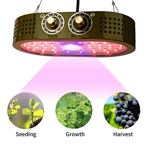 - COB Grow Light 1100W Full Spectrum Lamp, Indoor Grow Lights for Veg and Flower Plants, Double Adjustable Knobs Plant Light for Greenhouse(Double-chip 10W LEDs),Benflor