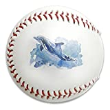 Nvthenpiaoliang Dolphin On Ice Watercolor Paint Soft Standard Practice Ball Baseball Game Ball