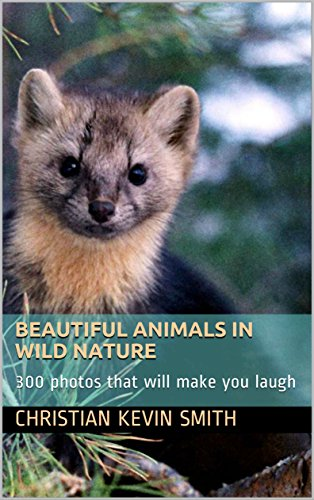 Amazon beautiful animals in wild nature 300 photos that will beautiful animals in wild nature 300 photos that will make you laugh by smith fandeluxe Gallery