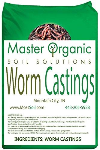 Casting Worm - 5