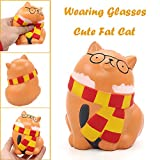BBTshop Cute Wearing Glasses Fat Cat Slow Rising Scented Relieve Stress Toy