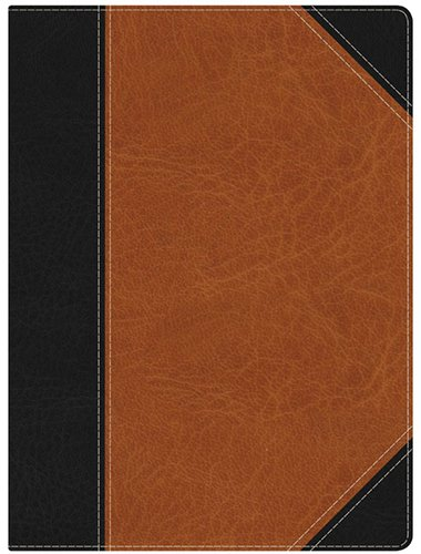 hcsb-study-bible-black-brown-leathertouch
