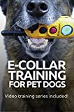 E-COLLAR TRAINING for Pet Dogs