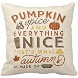Leaveland Pillowcase Decorative Throw Pillow Cover Cushion Pumpkin Spice Polyester Pillowcase 20 x 20 Inches