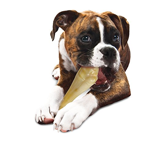 Nylabone Big Chew Durable Toy Bone for Large Breeds