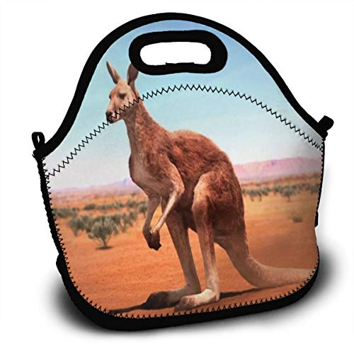 Dejup Lunch Bag Kangaroo Tote Reusable Insulated Lunchbox,
