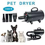 YaeCCC Portable Dog Cat Pet Grooming Dryer 2400w Salon Blow Hair Dryer Quick Draw Hairdryer with Different 4 Nozzles Pet Hairdryer Machine Set (Black)