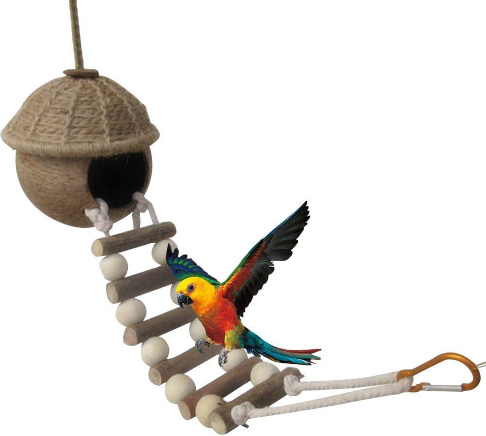 Yunt naturales Nido de Pájaro Coco Balancín Ladder Dormir Espacio para hámster loros Ninfa loros agapornis