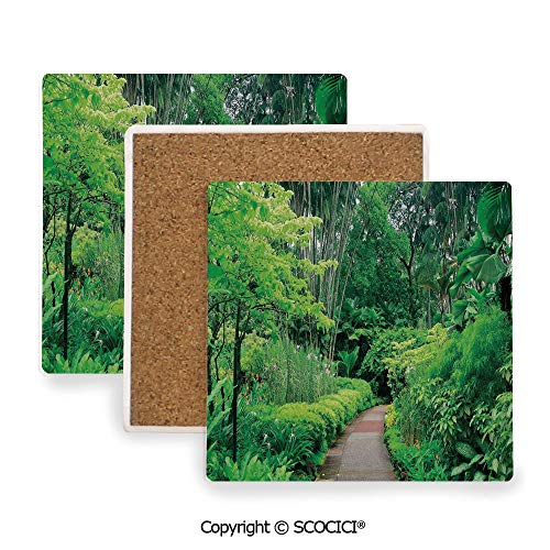 Botanic Coasters Square Garden - Ceramic Coaster With Cork Mat on the back side, Tabletop Protection for Any Table Type, Square coaster,Forest,Green Plants Trees in Singapore Asia Botanic Gardens,3.9
