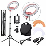 EACHSHOT ES180 Kit, {Including Light, Stand, Phone Clamp, Tripod Head }180 LED 13'' Stepless Adjustable Ring Light Camera Photo/Video Portrait photography 180pcs LED 5500K Dimmable -Pink